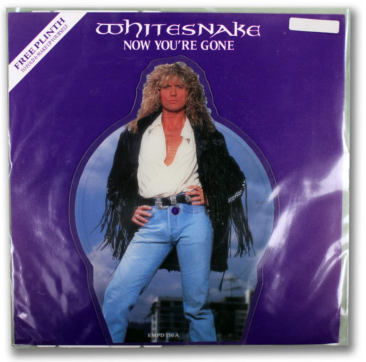 Whitesnake, Now You're Gone Picture Disc