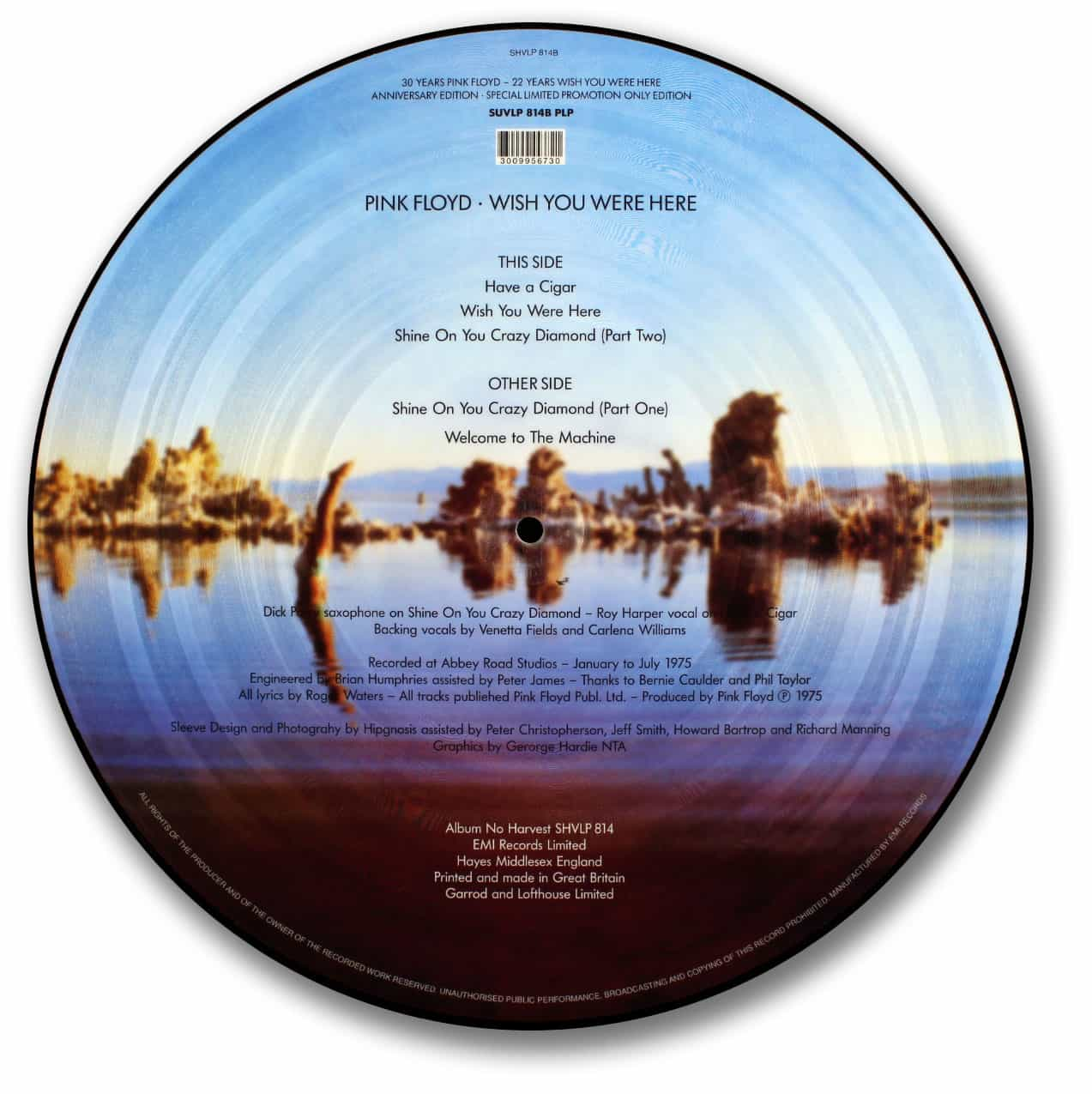 Pink Floyd, Wish You Were Here Picture Disc